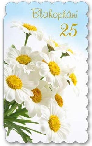přání k narozeninám 25 let Blahopřání s květinami k 25. narozeninám přání k narozeninám 25 let